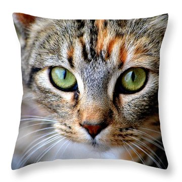 Throw Pillow featuring the photograph Soul Cat by Deena Stoddard
