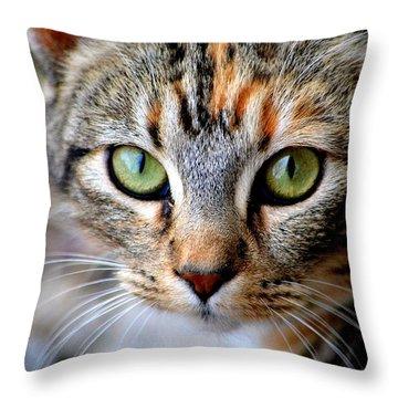 Soul Cat Throw Pillow by Deena Stoddard