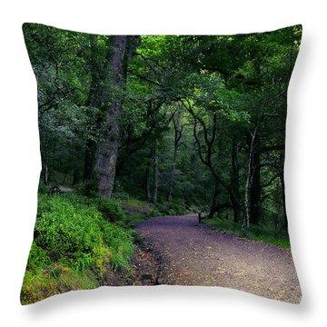 Soul Journey. Glendalough. Ireland Throw Pillow by Jenny Rainbow