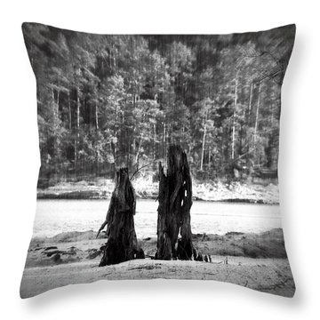 Soul Mates Throw Pillow