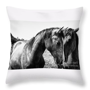Soul Mates Throw Pillow by Toni Hopper