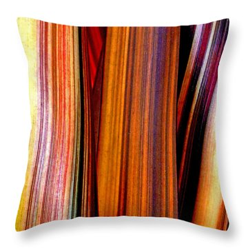 Soulful  Throw Pillow by Steve Taylor
