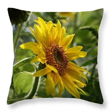 Soulshine No.2 Throw Pillow by Neal Eslinger