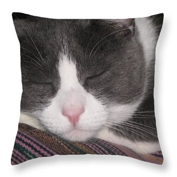 Throw Pillow featuring the photograph Sound Asleep  by Chrisann Ellis