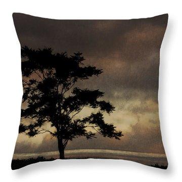 Sound Light Throw Pillow by Ron Jones