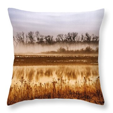 Sounds Of Silence Throw Pillow by Tom Druin