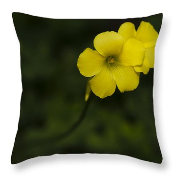 Sour Grass Throw Pillow