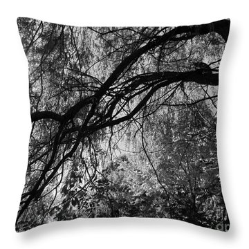 Source Of Energy 3 Throw Pillow by France Laliberte