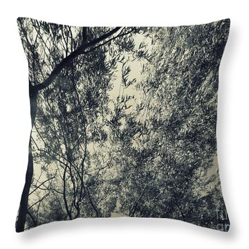 Source Of Energy 5 Throw Pillow by France Laliberte