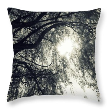 Source Of  Energy Throw Pillow by France Laliberte