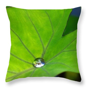 Throw Pillow featuring the photograph Source Of Life by Julia Ivanovna Willhite