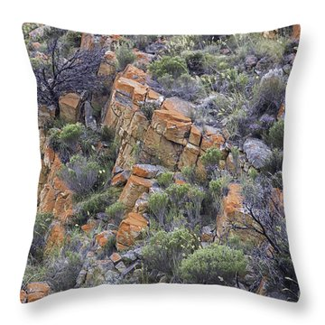 South African Hills Throw Pillow