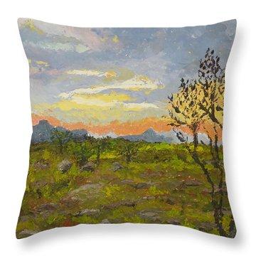 South African Sunset Throw Pillow by Diane Arlitt