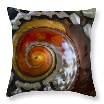 South African Turban Shell Throw Pillow