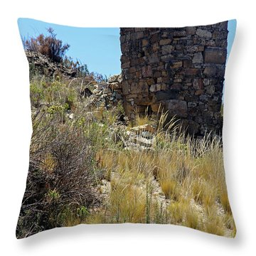 Aymara Throw Pillows