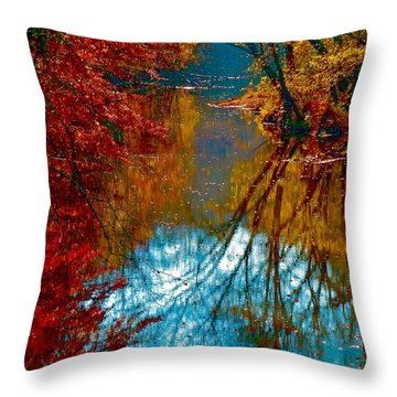 South Anna River Reflections Throw Pillow