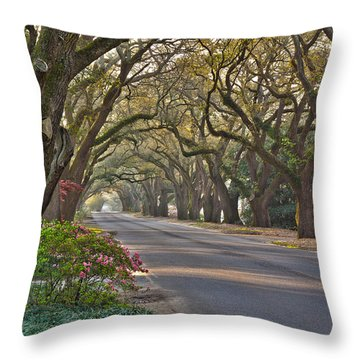 South Boundary In Spring Throw Pillow