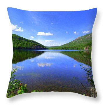 South Branch Pond Throw Pillow by Elizabeth Dow
