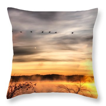 South Carolina Morning Throw Pillow by Lynne Jenkins