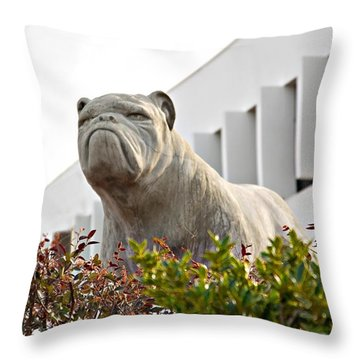 Throw Pillow featuring the photograph South Carolina State University Bulldog by Bob Pardue
