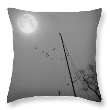 South For The Winter Throw Pillow by Brian Wallace