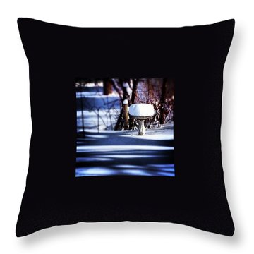 South For Winter Throw Pillow