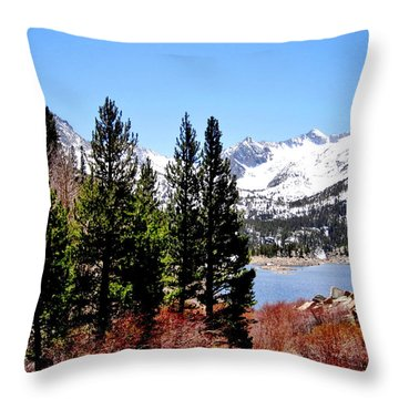 Throw Pillow featuring the photograph South Lake by Marilyn Diaz