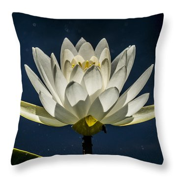 South Mountain Beauty Throw Pillow