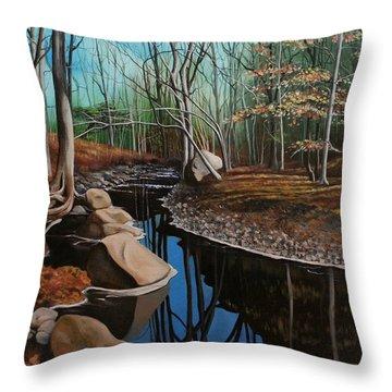 South Mountain Stream Throw Pillow