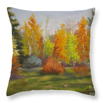 South Sask. Dr. Park Throw Pillow by Mohamed Hirji