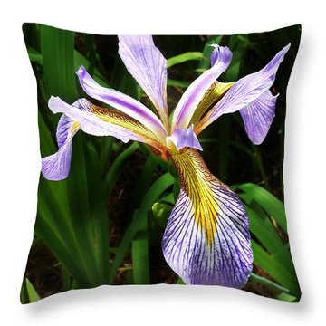 Southern Blue Flag Iris Throw Pillow by William Tanneberger