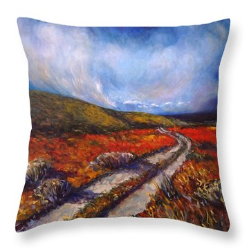 Southern California Road Throw Pillow