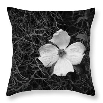 Southern Dogwood Throw Pillow
