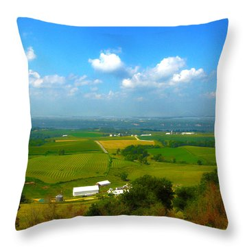 Southern Illinois River Basin Farmland Throw Pillow