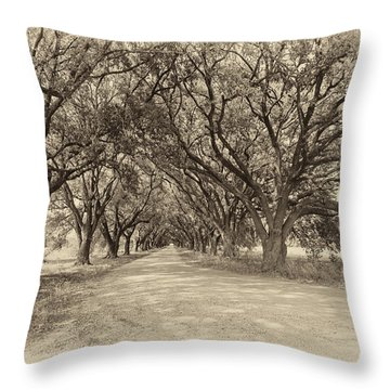 Southern Journey Sepia Throw Pillow by Steve Harrington