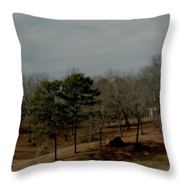 Throw Pillow featuring the photograph Southern Landscape by Lesa Fine