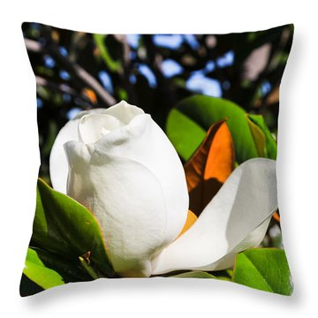 Southern Magnolia Blossom Throw Pillow