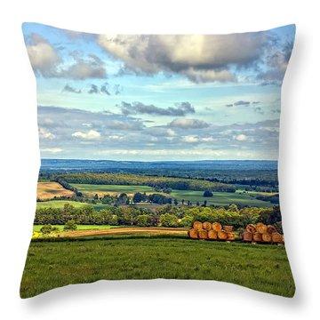 Southern Ontario Throw Pillow by Steve Harrington