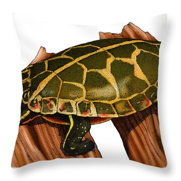 Southern Painted Turtle Throw Pillow