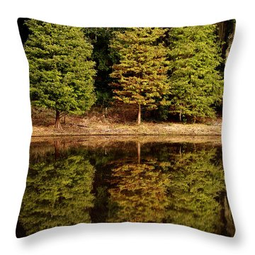Southern Reflections Throw Pillow by Phill Doherty