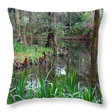 Southern Serenity Throw Pillow by Carol Groenen