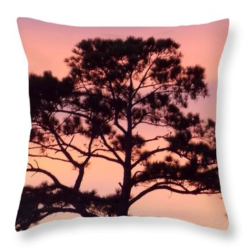 Southern Sundown Throw Pillow by John Glass