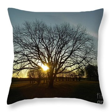 Southern Sunrise Special Throw Pillow