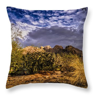 Southwest Salad No.2 Throw Pillow