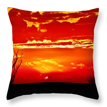 Southwest Sunset Throw Pillow
