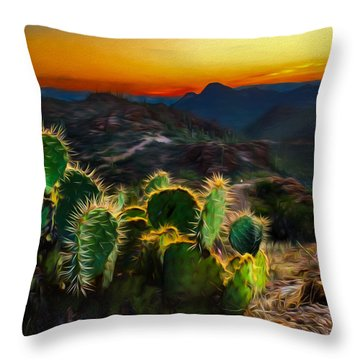 Southwestern Dream Throw Pillow