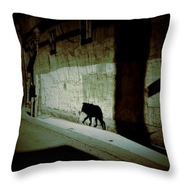 Southwestern Patrol  Throw Pillow by Lin Haring