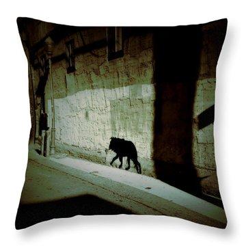 Southwestern Patrol  Throw Pillow