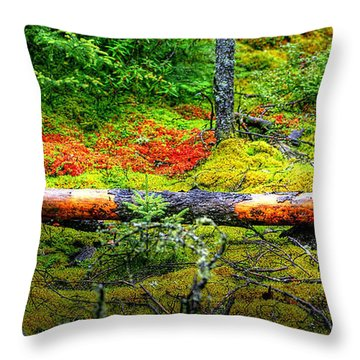 Spagnum Moss On The Fen  Throw Pillow