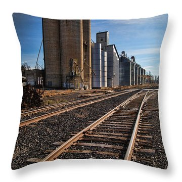 Spangle Grain Elevator Color Throw Pillow